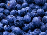 wet-blueberries